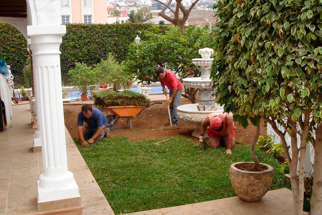 Jardineria el castillo jardiner as vegetales art culos for Articulos de jardineria